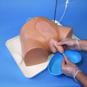 Процесс катетеризации на макете