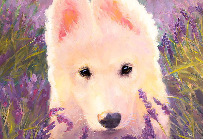 Custom Pet Portrait From Photographs White Huskygerman Shepherd Flowers Background Premium Pet Portrait Luxurious Present Anniversary Birthday Christmas Gift By Kate Tova Usa