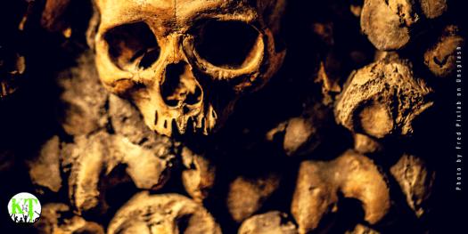 Fritz Haarmann - bag of bones