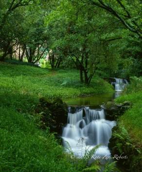 South-Africa-Garden-3