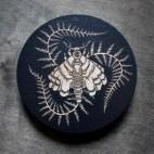 Moth and Ferns - Wood Coaster