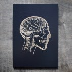 """Anatomy of the Head - 5x7"""" Wood Engraving"""