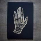 "Anatomical Hand - 5x7"" Wood Engraving"