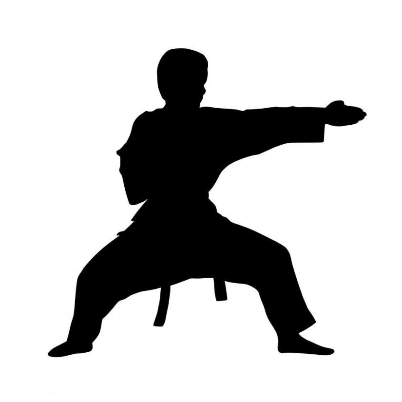 karate-fighter-silhouette-