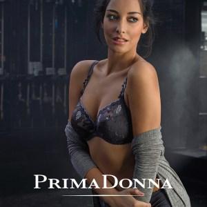 Allegra, Fancy Grey