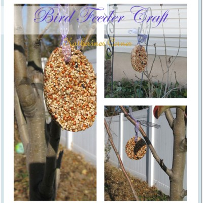 Bird Seed Craft