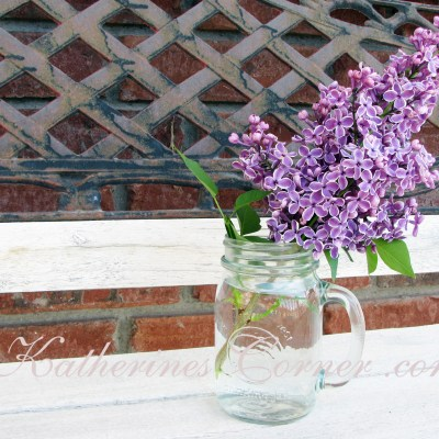 Wordless Wednesday Purple Lilacs