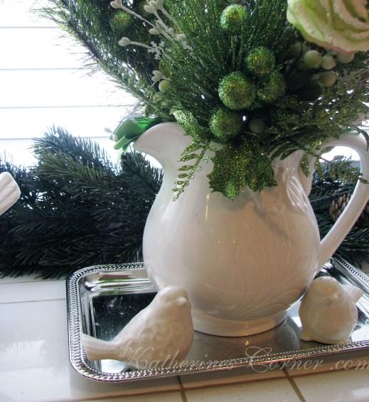 windowsill pitcher