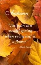 autumn four seasons printable