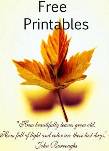 Free Printables Katherines Corner
