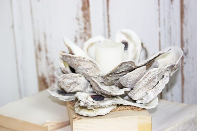 oyster-shell-diy-5