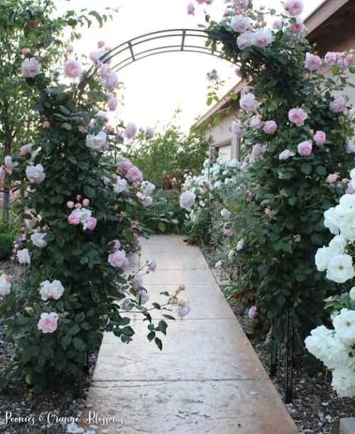spring garden tour