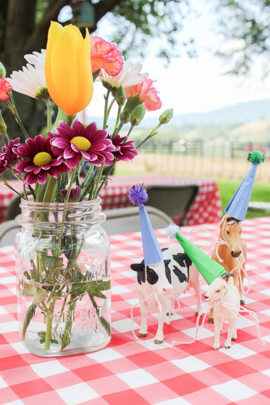 farm themed birthday party decor