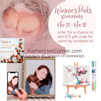 winnies picks premium adult paint by numbers giveaway