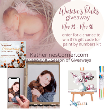 Winnie's Picks giveaway in the annual season of giveaways