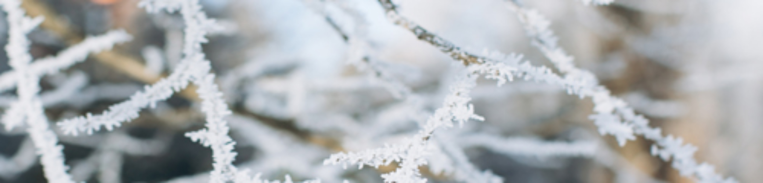 winter slider 2