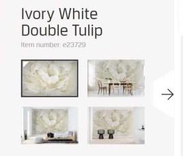 white tulip canvas