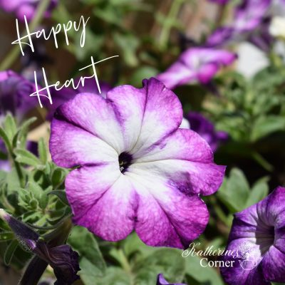 summer garden happy heart