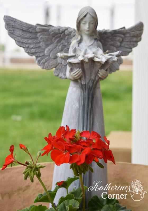 geranium garden angel katherines corner