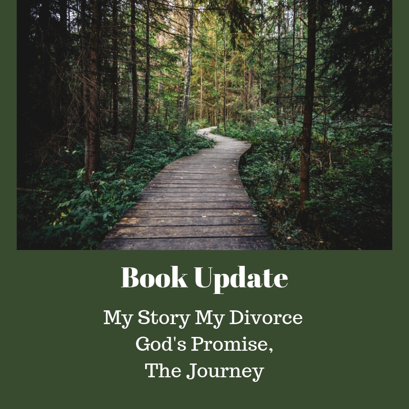 My Story My Divorce God's Promise, The Journey