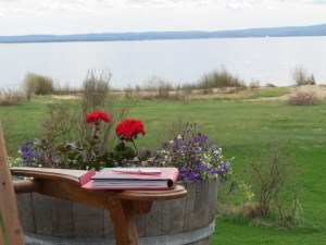 When I settle in at our cabin by the lake, the writing will be calling my name. I just have to get myself there.