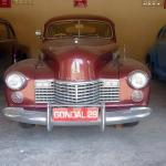 Royal Cars of Gondal State