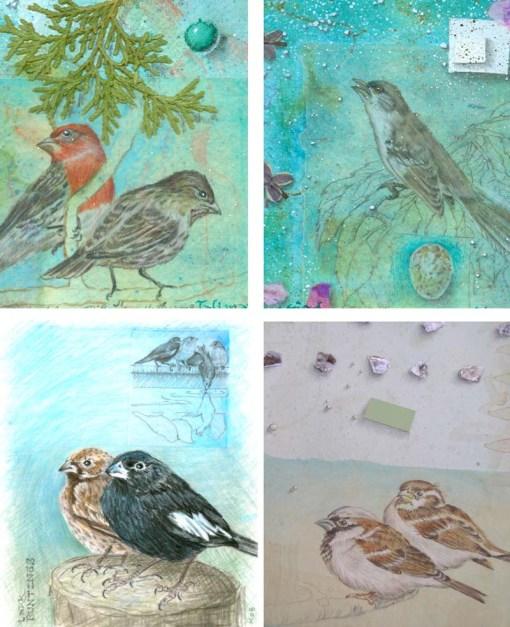 Kathleen O'Brien, Bird Card set 1