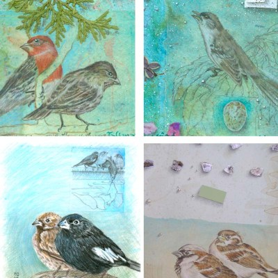 Kathleen O'Brien, Bird Card set 1