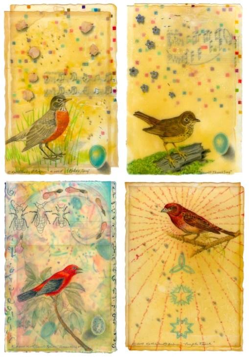 Bird Card Set 6