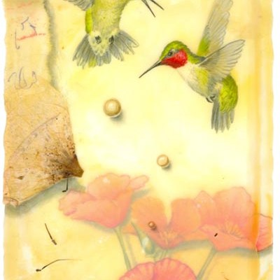 Ruby Throated Hummingbirds, Giclee Print