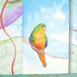 """Song for Orange Bellied Parrot"" collaged drawing, detail Kathleen O'Brien"
