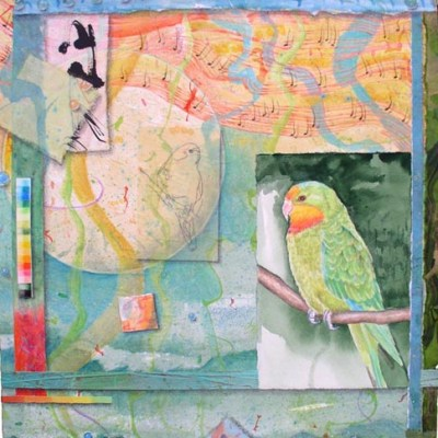 Song for Superb Parrot