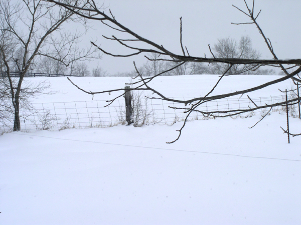 Due North Snow Light,, photo by Greg Orth