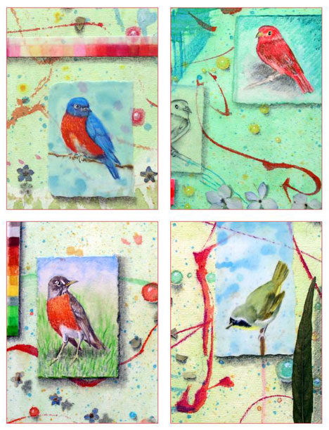 Song Birds Card Set Kathleen O'Brien