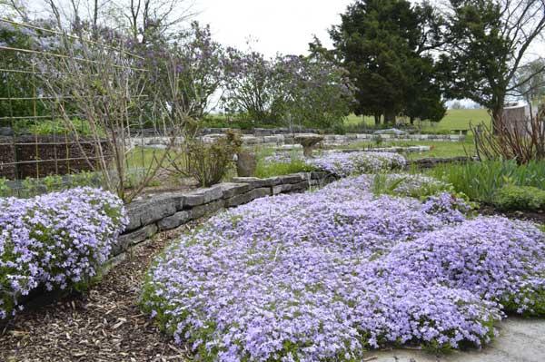 Spring Into Art and the Garden