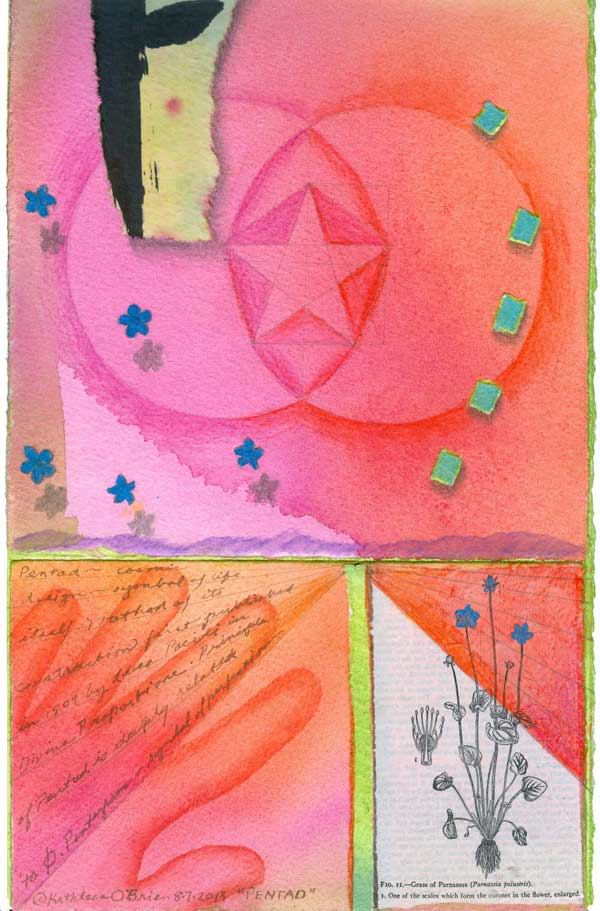 "© Kathleen O'Brien, collaboration with Helen Davey, ""Pentad,52 Project"", print, watercolor, drawing, petals, collage, 2014"