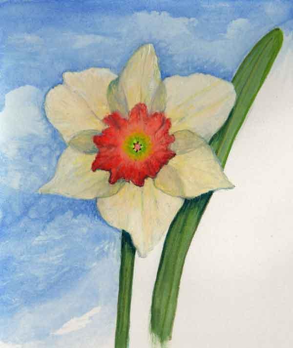 09 First Daffodil,©Kathleen O'Brien