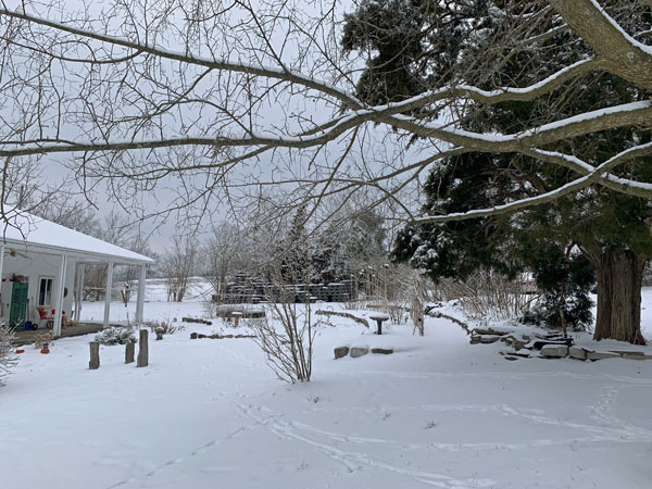 Winter Garden, ©Kathleen O'Brien