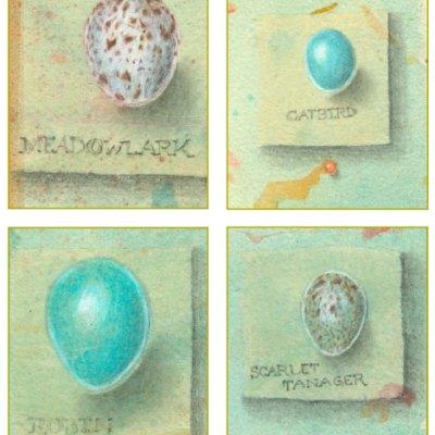 Bird Eggs Set 2, Meadowlark, Catbird, Robin, Scarlet Tanager
