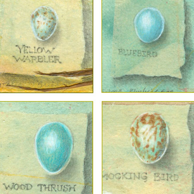 Bird Eggs Set 1, ©Kathleen O'Brien