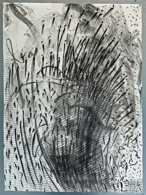 """Front side of """"Seeing Both Sides"""" before tearing, showing Vine Charcoal drawing with beeswax crayon by Kathleen O'Brien"""