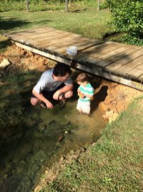 Catching frogs and crawdads!