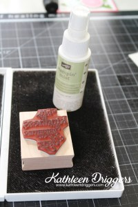 Stamp Cleaned with Stampin' Mist