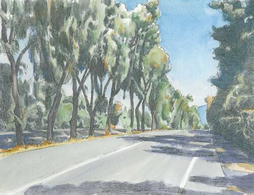 Highway 9, Monte Sereno