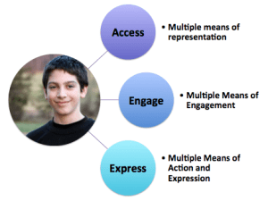 UDL lens of access engage and expres