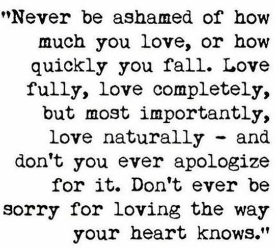 Love Without Apology