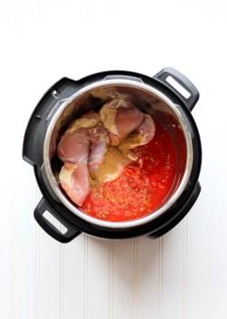 Instant Pot Salsa Chicken thighs
