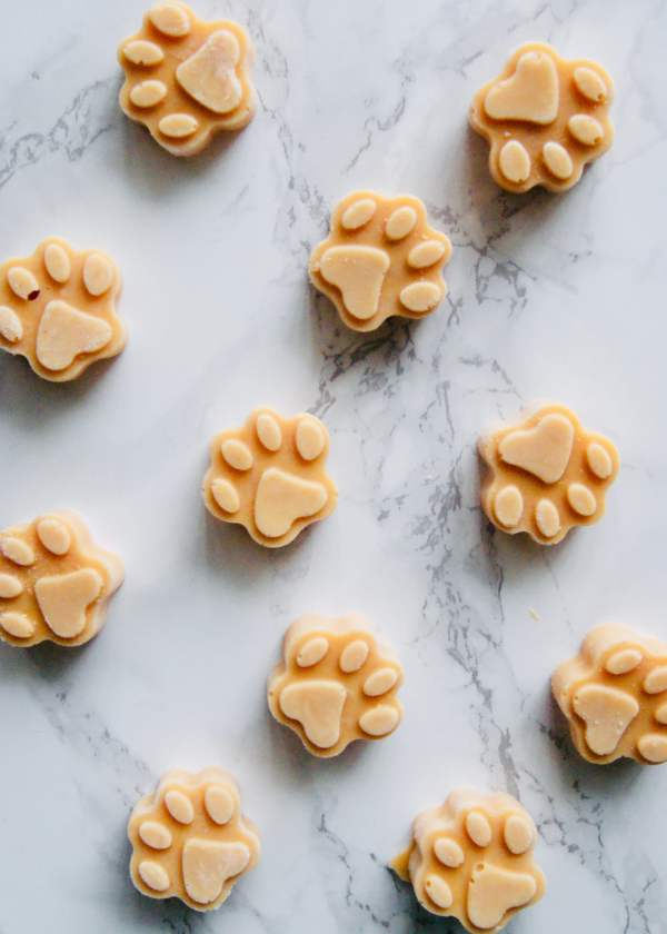 Spoil your pooch with this 3-ingredient dog ice-cream! Just yogurt, pumpkin, and peanut butter. Perfect treat for your furry friend on a hot day. Recipe at KathleensCravings.com #dogicecream #homemadedogtreat #dogtreat #doggyicecream