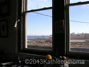 View from West Cove window