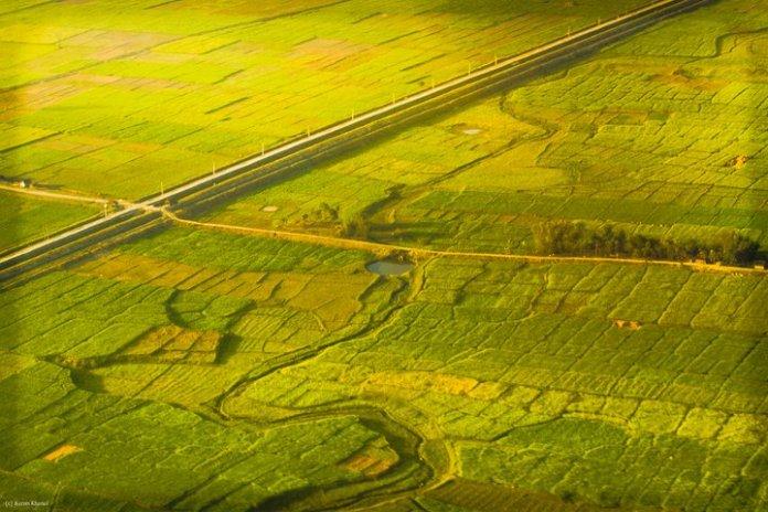 Terai region